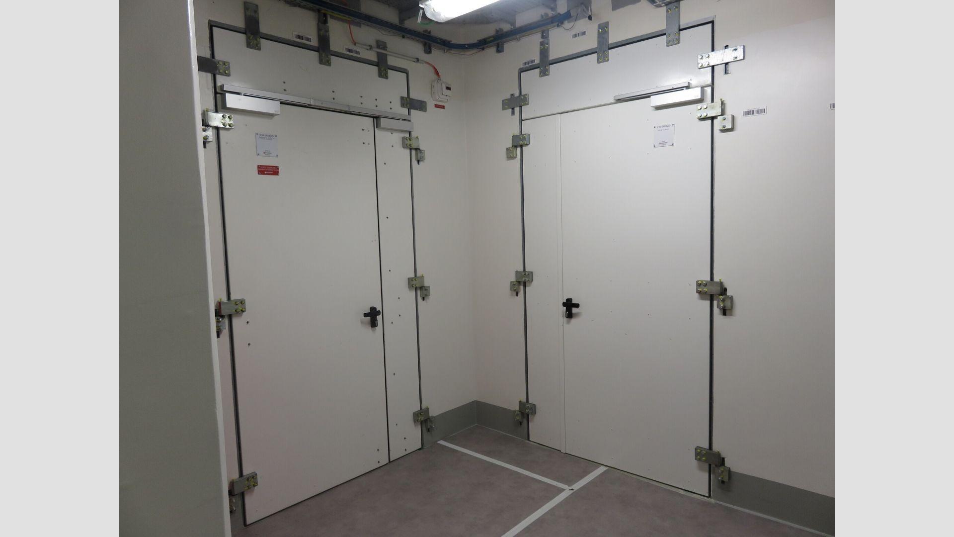Дверь с двусторонней обшивкой стальным листом - Вега