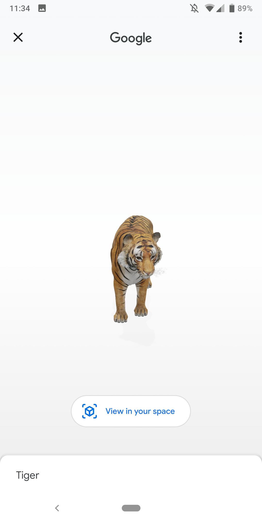 Google search AR Animals