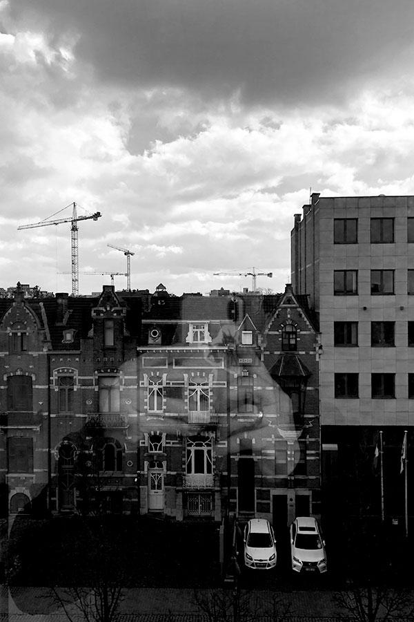 Random view Hasselt