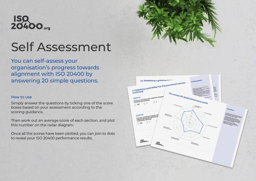 ISO 20400 Self Assessment Tool