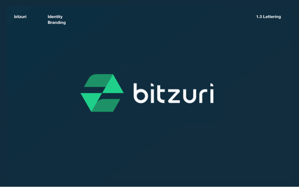 Bitzuri logo study