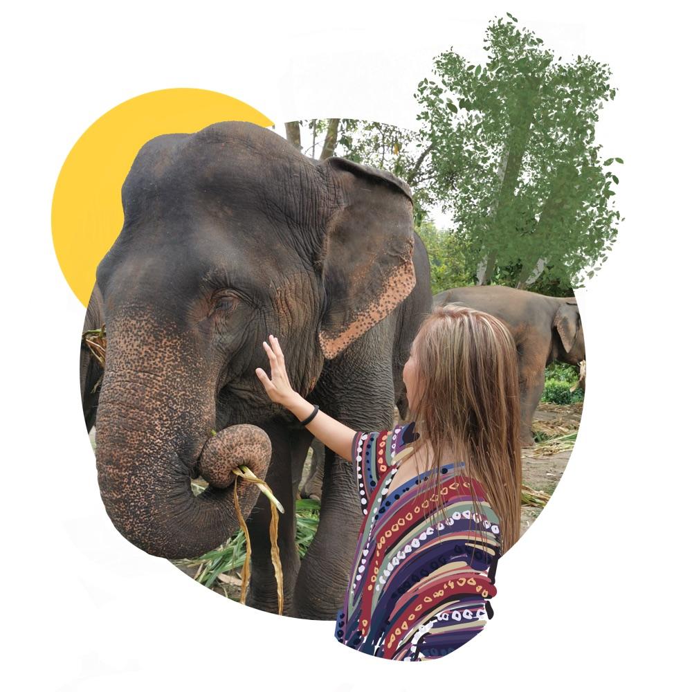 Wash Elephants at the Mason Adventure Bali