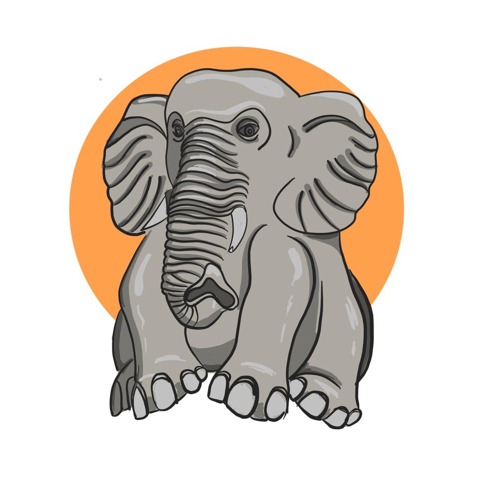 Visit Balis Best Elephant Parks & Safaris