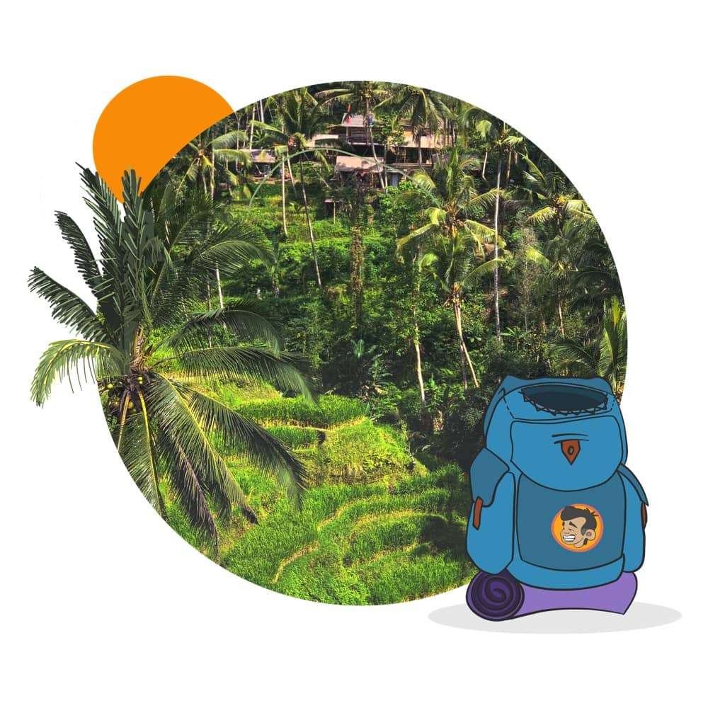 Plan your  Bali Tegalalang Rice Terrace  tour with a local driver