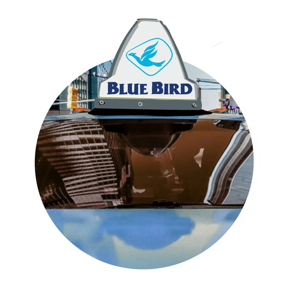 Blue Bird Taxi Service is highly recommended.