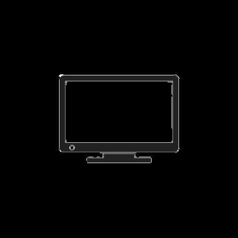 Screen Repair and Replacement