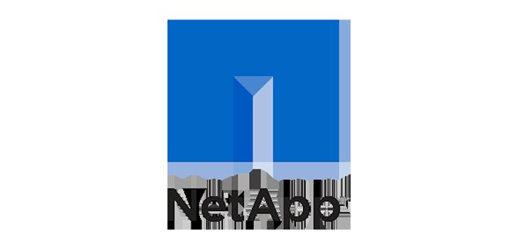 logo parceiro Netapp