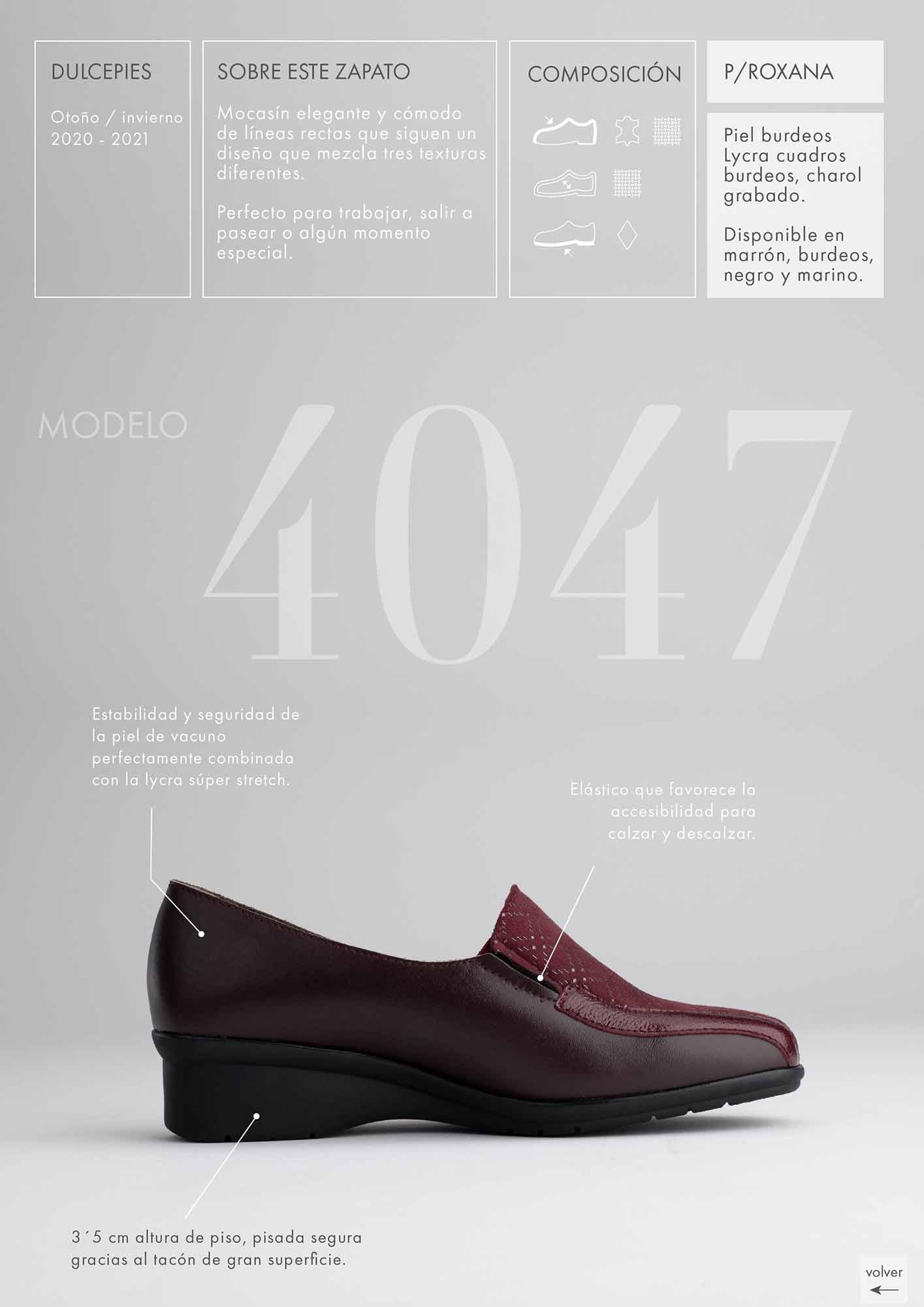 foto lateral de zapato elegante en catálogo