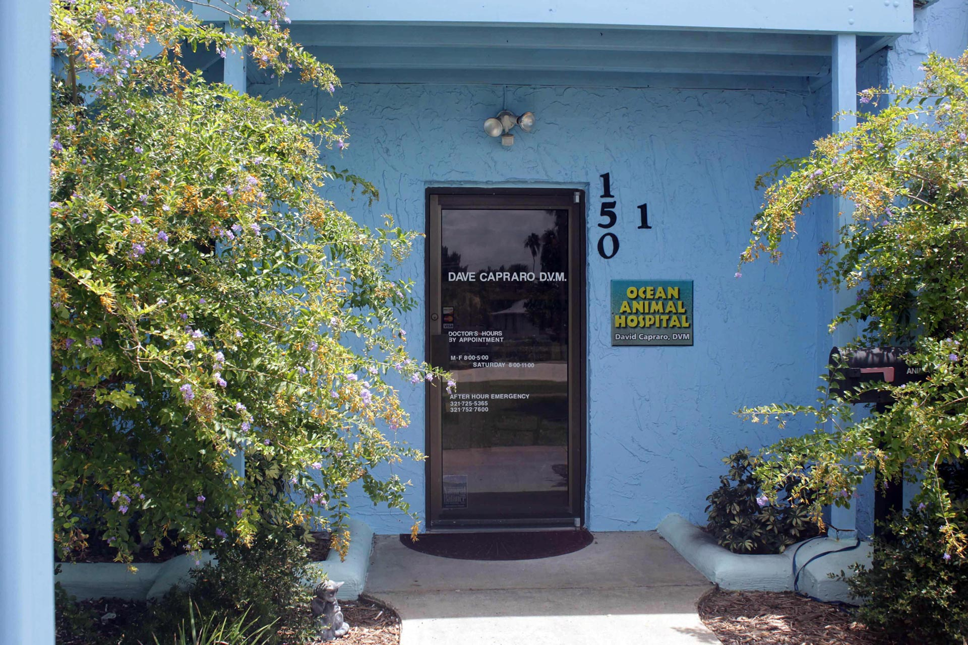 Ocean Animal Hospital Office