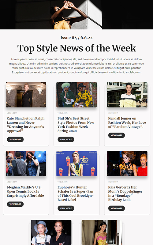 Preview of style news template