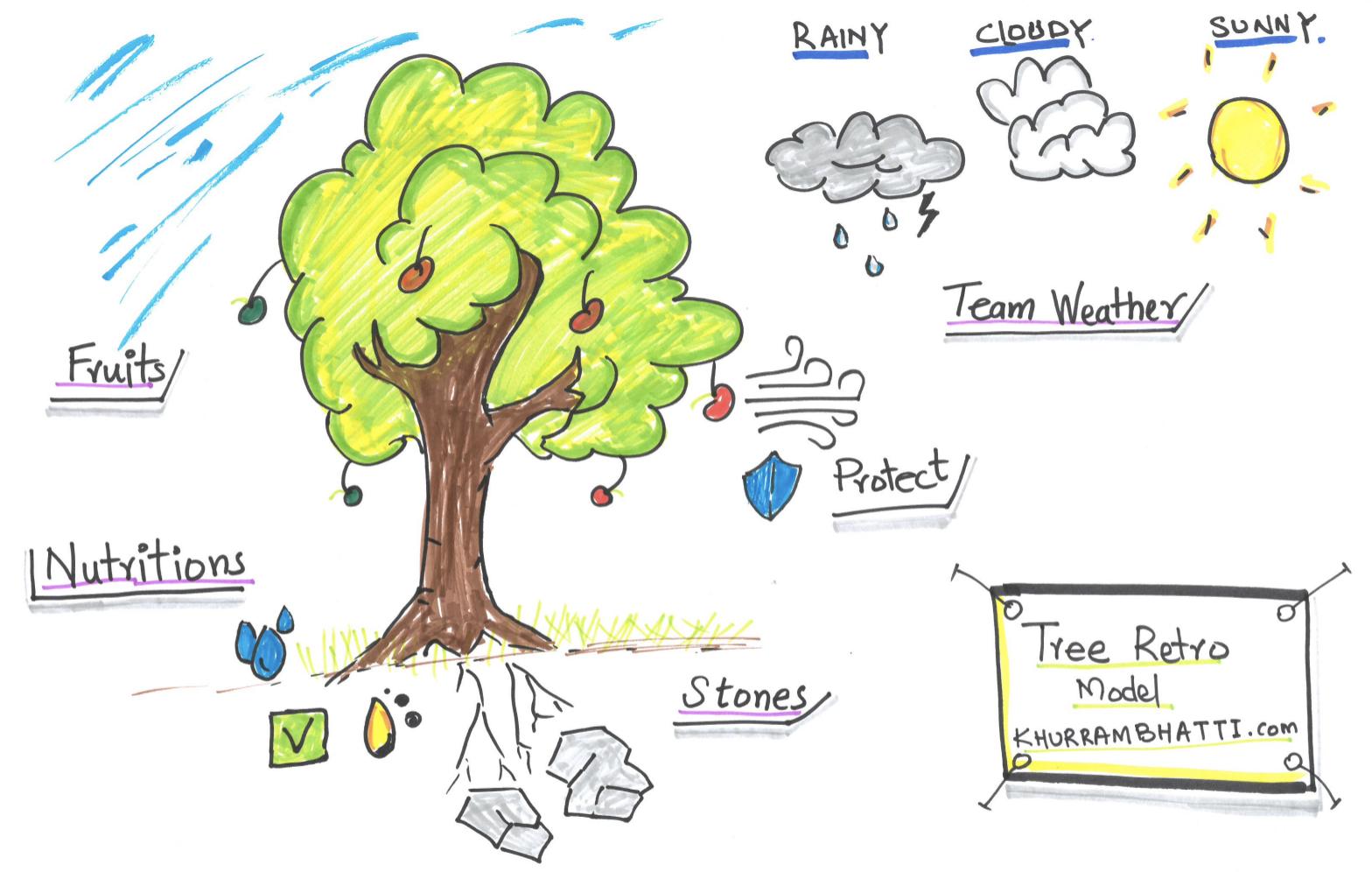 Tree Retrospective Model   Coaching a Potential