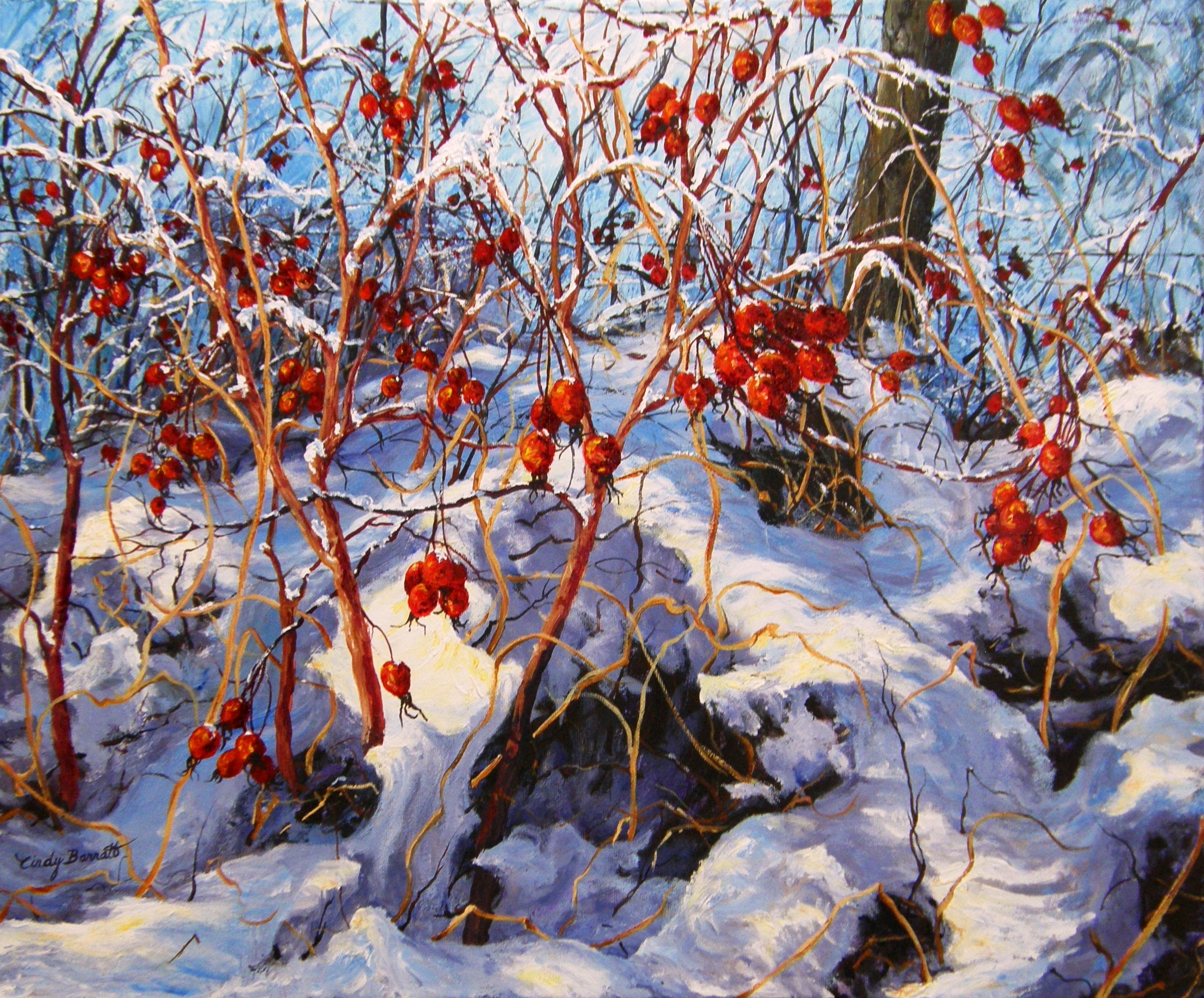 Winter Rose Hips #1