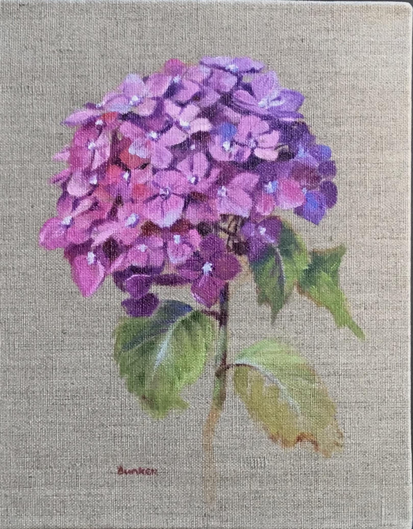 Hydrangea  (Sold)