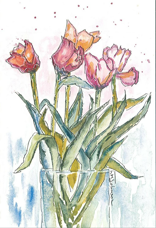 Tulip Sketch (Sold)