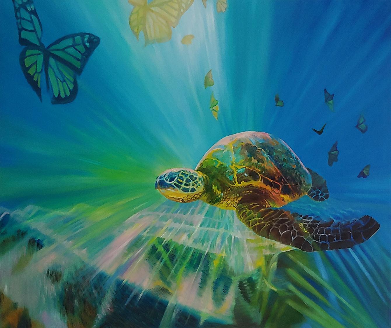 Turtle Transformation