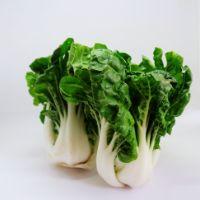 白菜(300g)