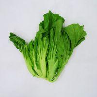 芥菜(300g)