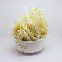 芽菜(~600g)