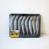 加拿大 多春魚