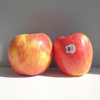 紐西蘭【艾菲】巨型蘋果(2個)