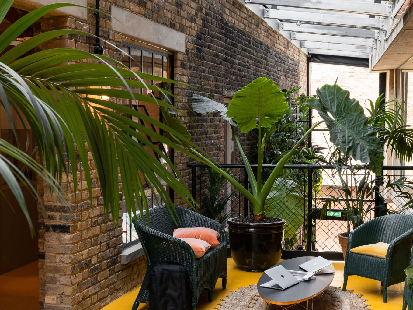 Top floor with plants and glass roof