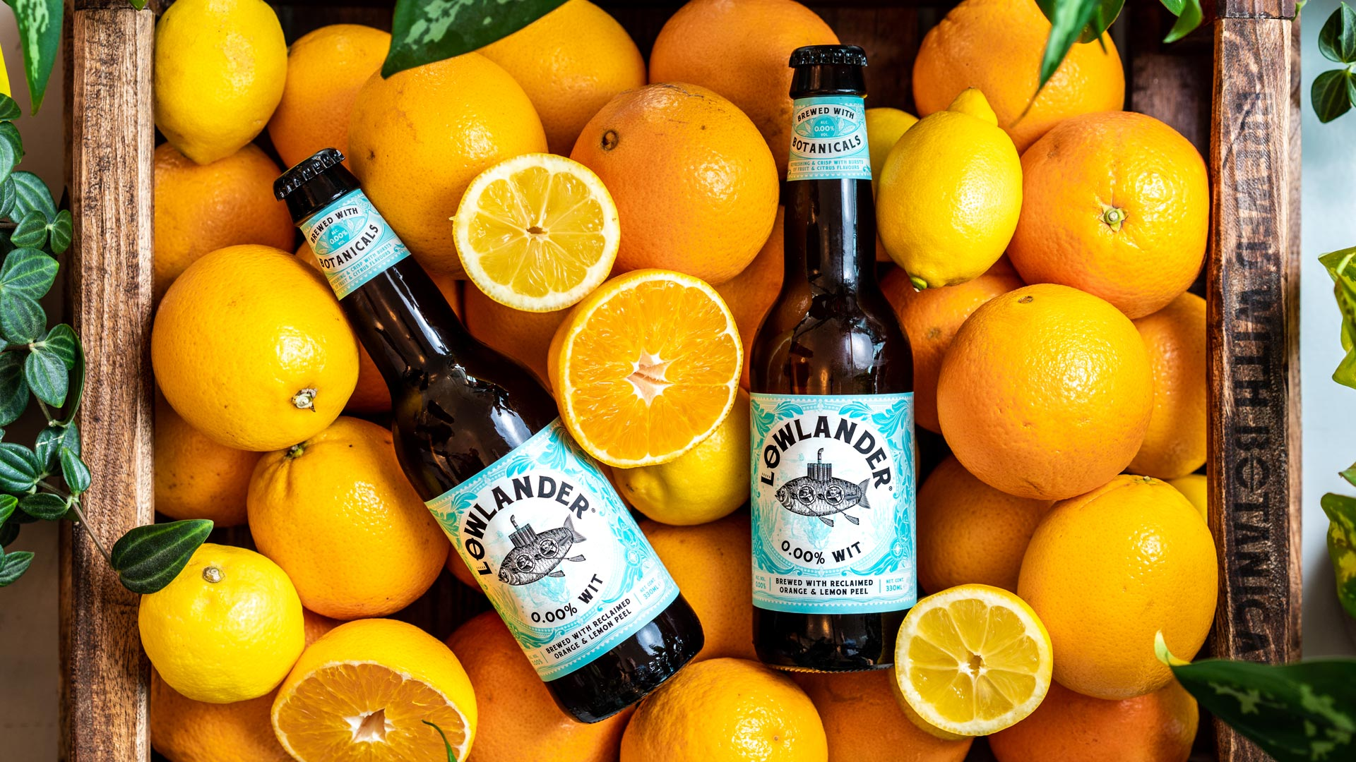 Lowlander Botanical Beer 0.00% WIT brewed with reclaimed orange and lemon, for an environmentally conscious alcohol free beer, which tells the story of Drebble the Dutch inventor of the first submarine in which he took King James for a ride down the River Thames in, Can design and illustrations created by Mutiny Agency.