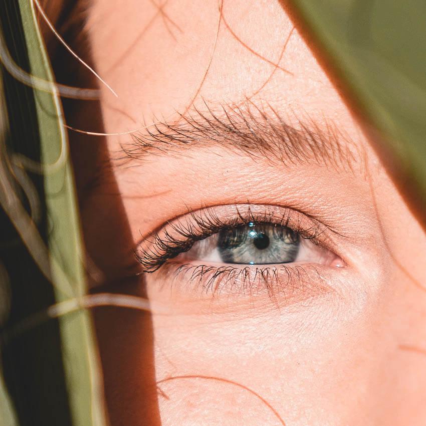 Ein Auge mit Kontaktlinsen von Peppler Augenoptik schaut durch Blätter. Finden Sie mit unserem kompetenten Optik-Team in Gießen-Wieseck die passende Kontaktlinse.