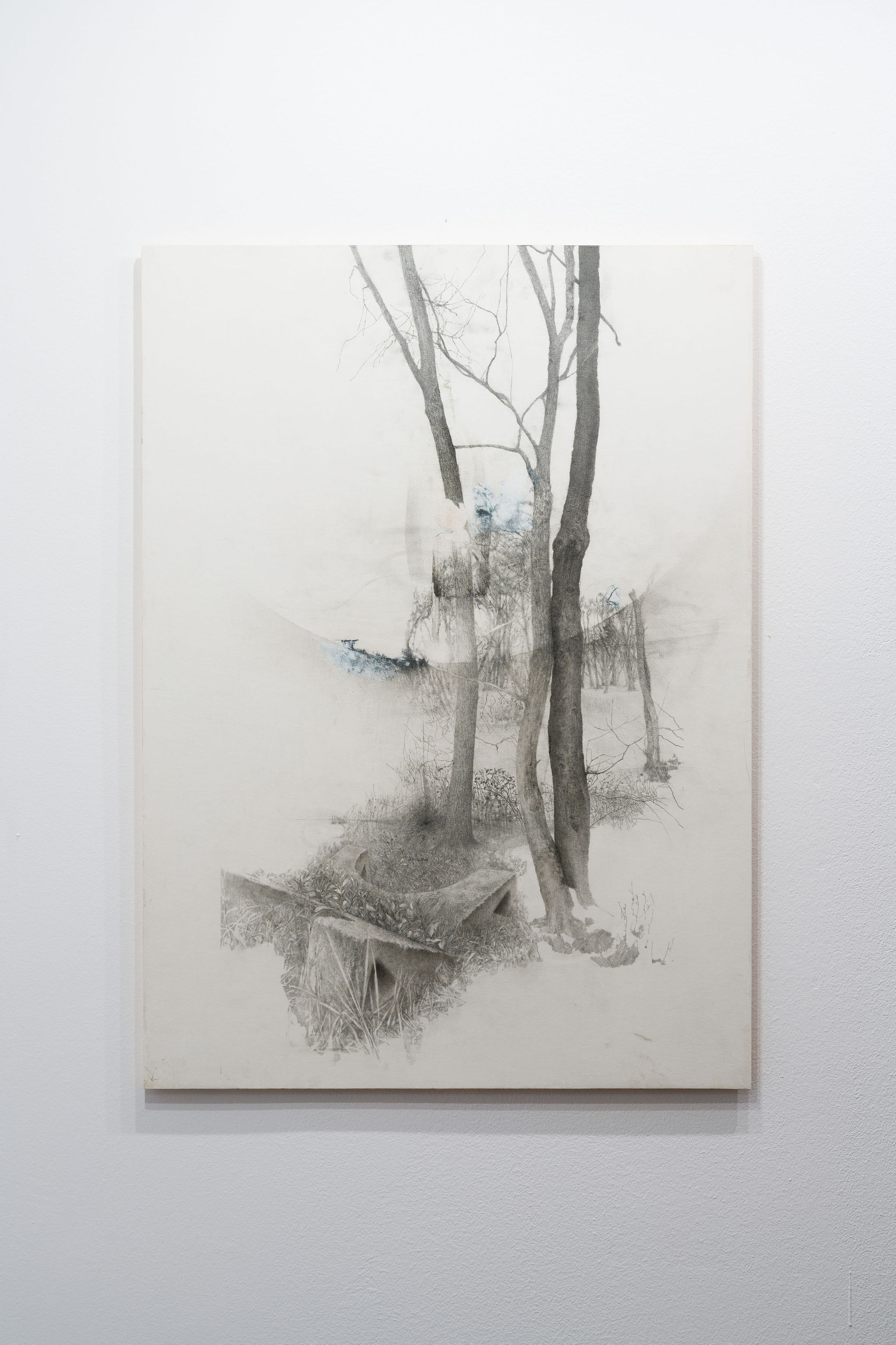 PHB, 2021 Graphite on paper mounted on wood