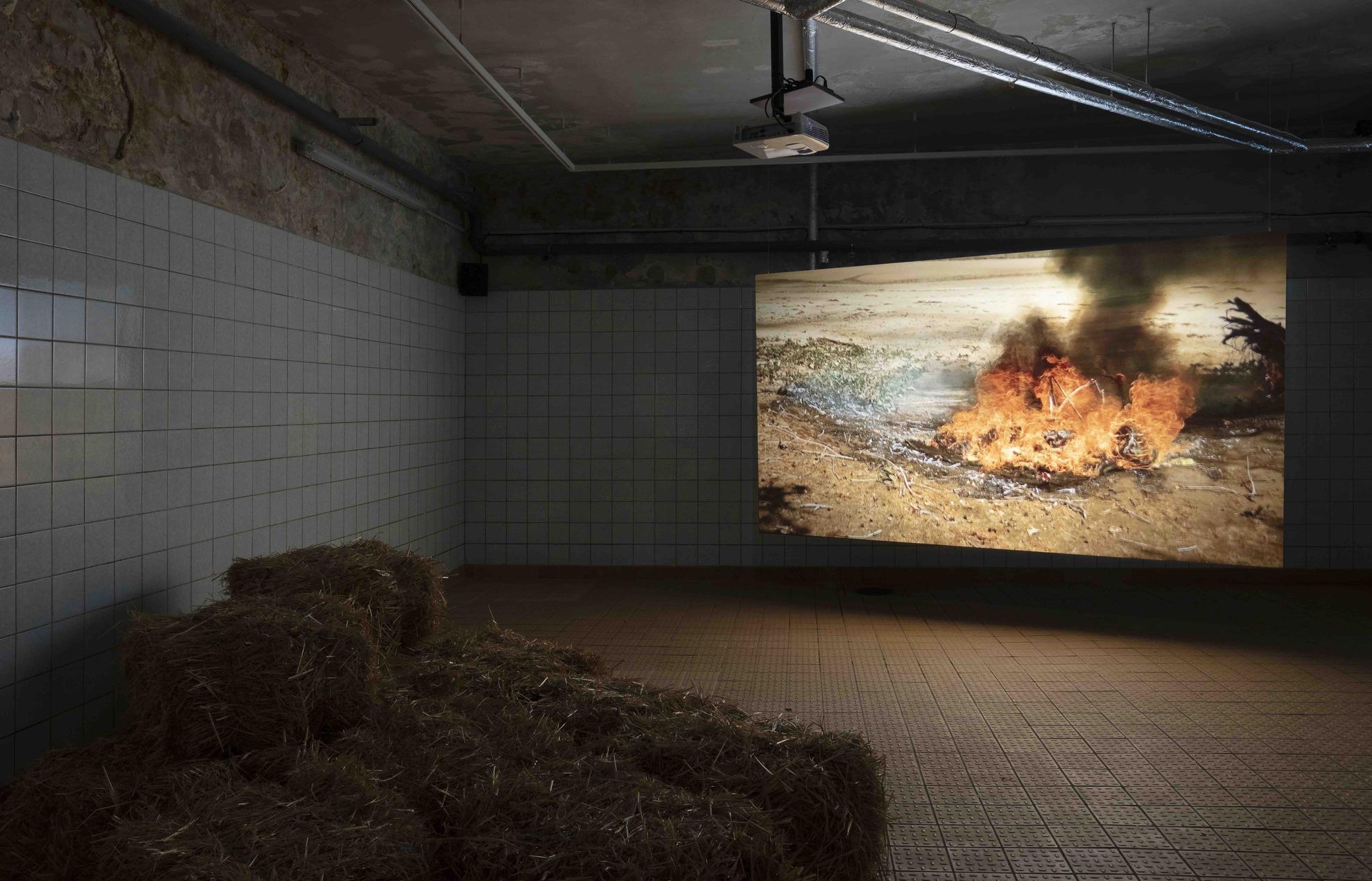 Karrabing Film Collective, Mermaids, or Aiden in Wonderland, 2019, Video, colour (27 minutes)