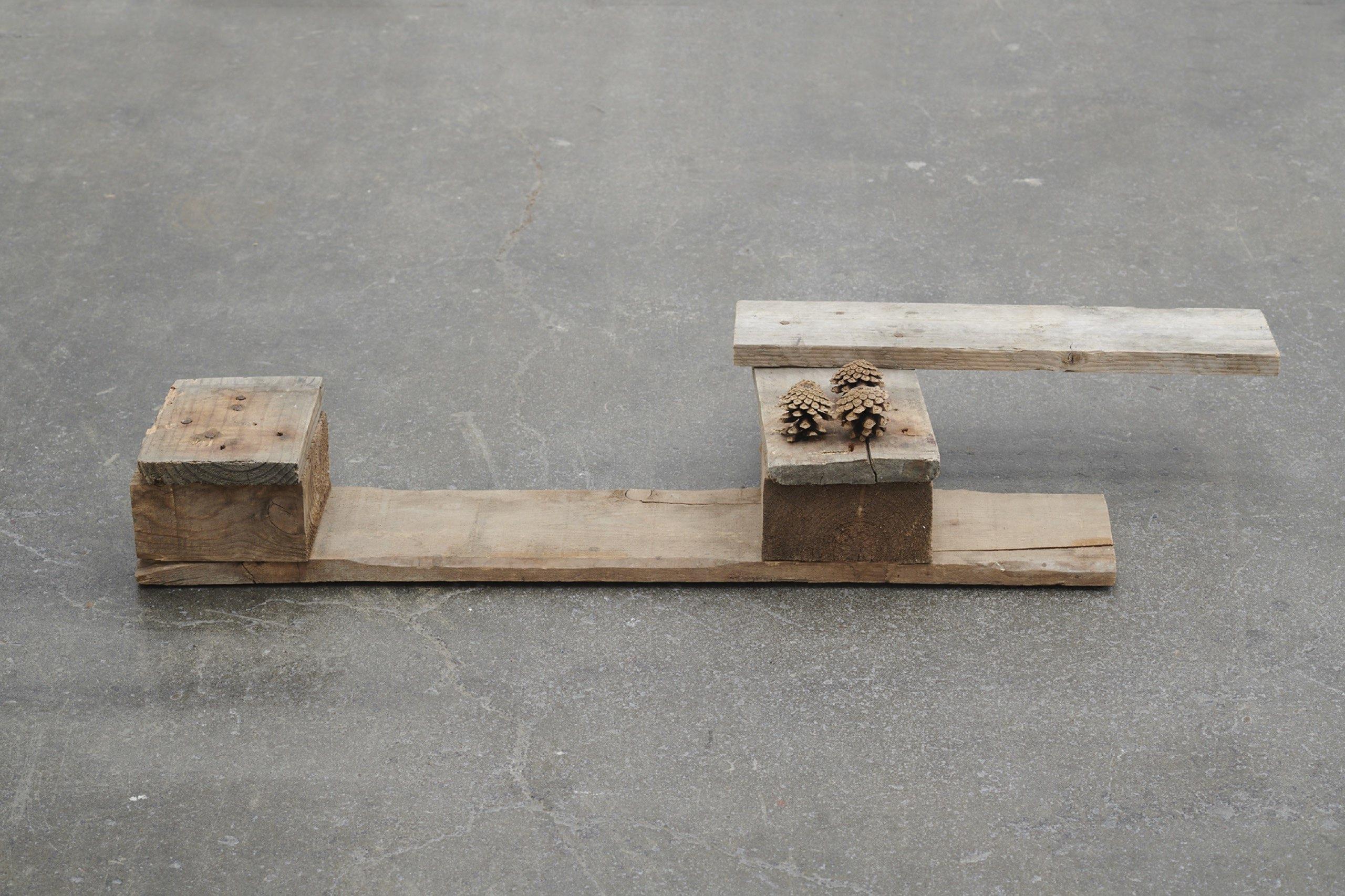 Helen Mirra, Ballou, 2006, Pallet wood, pine cones