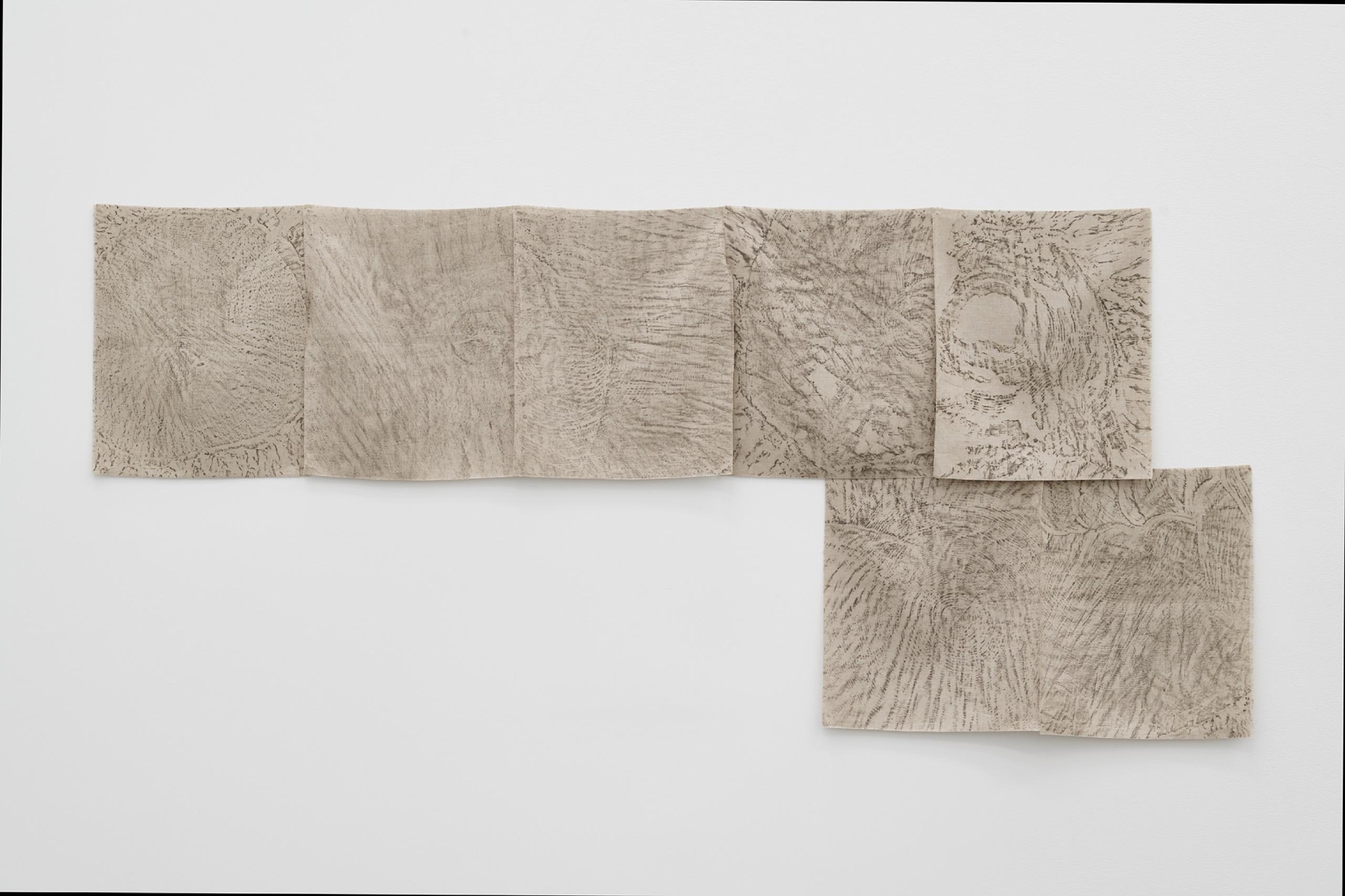 Helen Mirra, Field Recordings, 7 x 5000 Schritte, in Berlin (Hirschgarten), 22 August, 2010, Pastel oil on linen