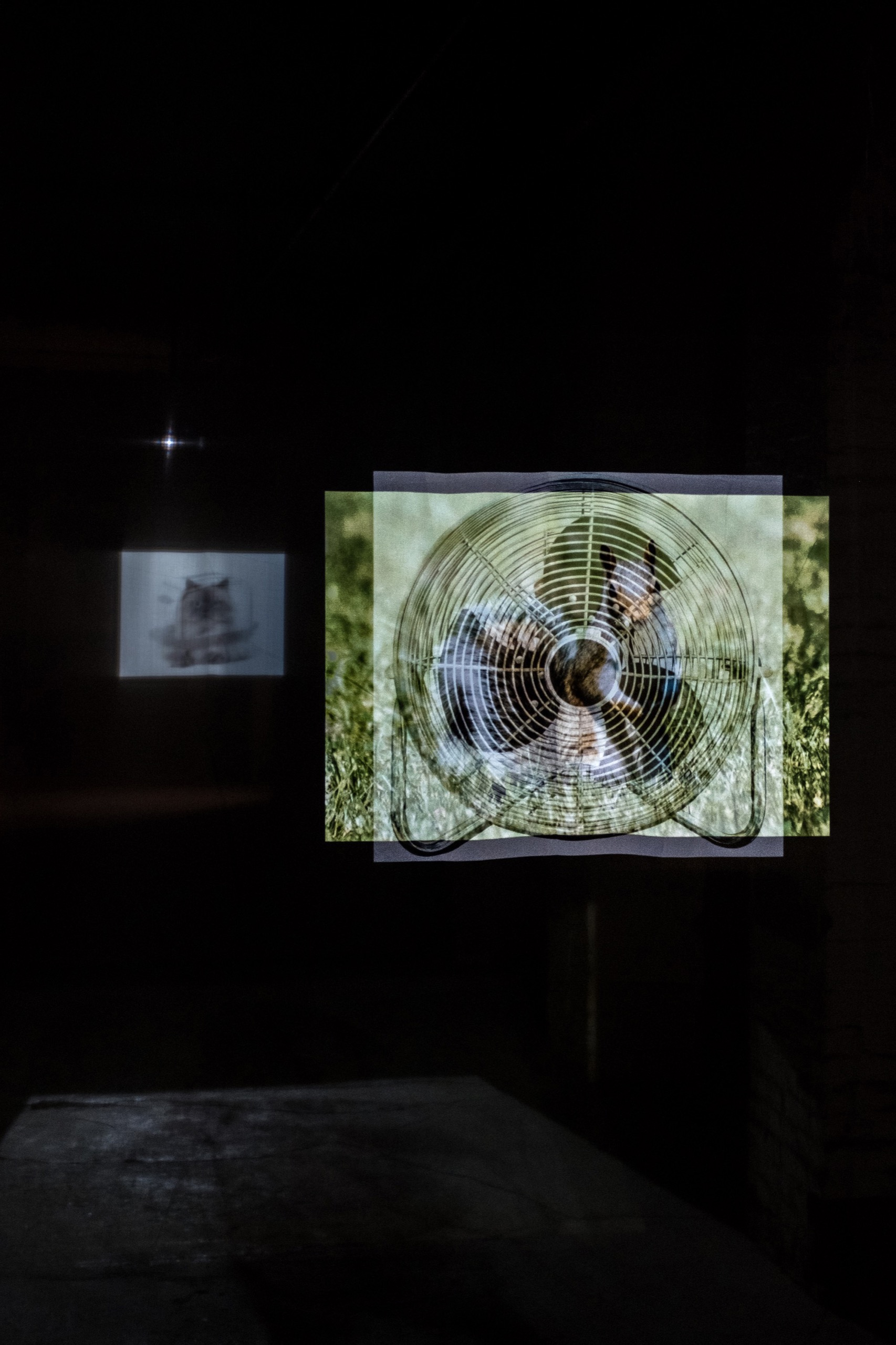 Memory Intensified by Hand of Manual World, 2021 Two-channel video projection, sheer fabric, Dimensions variable