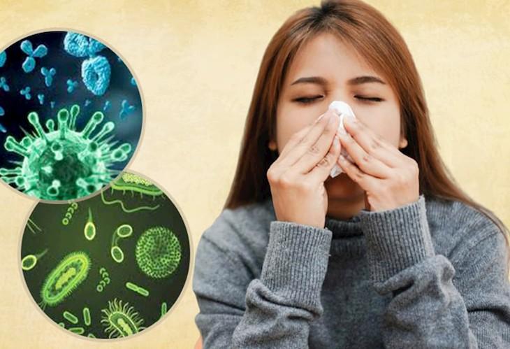 Nguyên nhân gây ra bệnh viêm xoang hàm có thể do vi khuẩn, virus xâm nhập