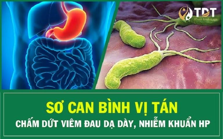 Sơ can Bình vị tán là bài thuốc Đông y đặc trị viêm loét dạ dày- tá tràng