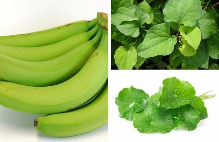 Bài thuốc chữa đau dạ dày bằng chuối xanh kết hợp rau má và rau diếp cá