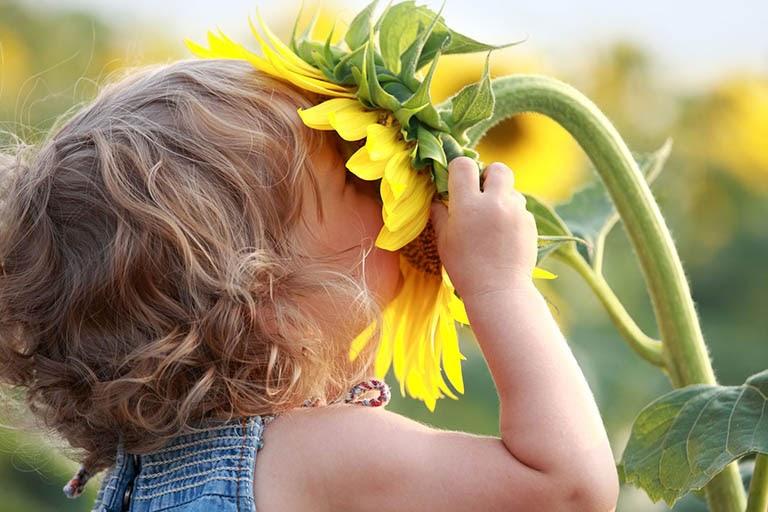 Nồng độ phấn hoa thay đổi theo mùa có thể là nguyên nhân gây kích ứng mũi