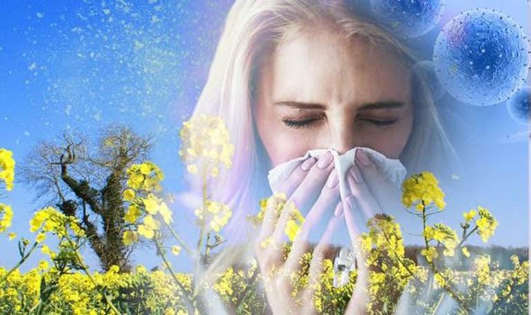 Viêm mũi dị ứng theo mùa là tình trạng dị ứng có tính chất chu kỳ