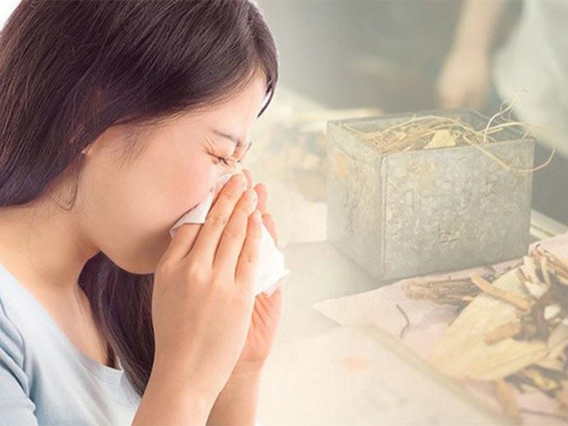 Trong Đông y, viêm mũi dị ứng thuộc chứng tỵ