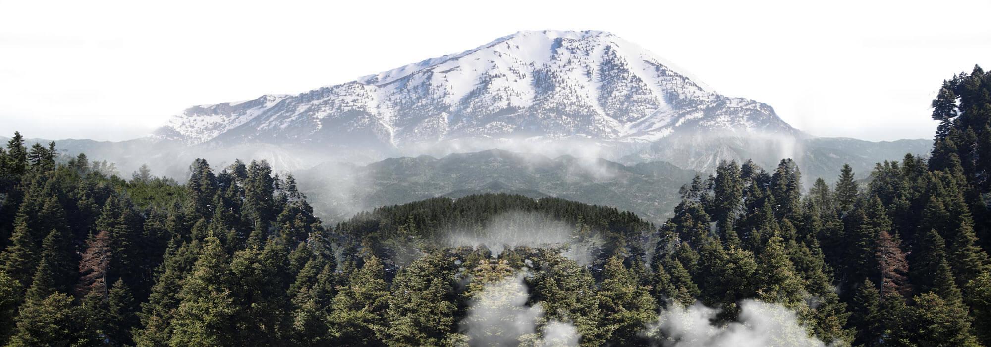 Οροσειρά Δίρφυς