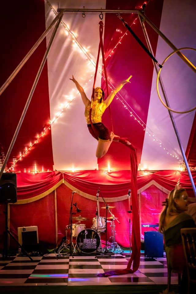 circus theme party entertainers for hire
