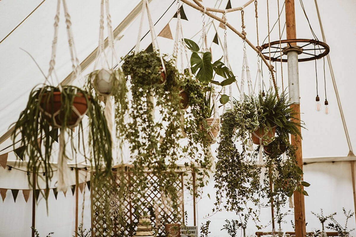Best hanging plants decorations in canvas wedding marquee