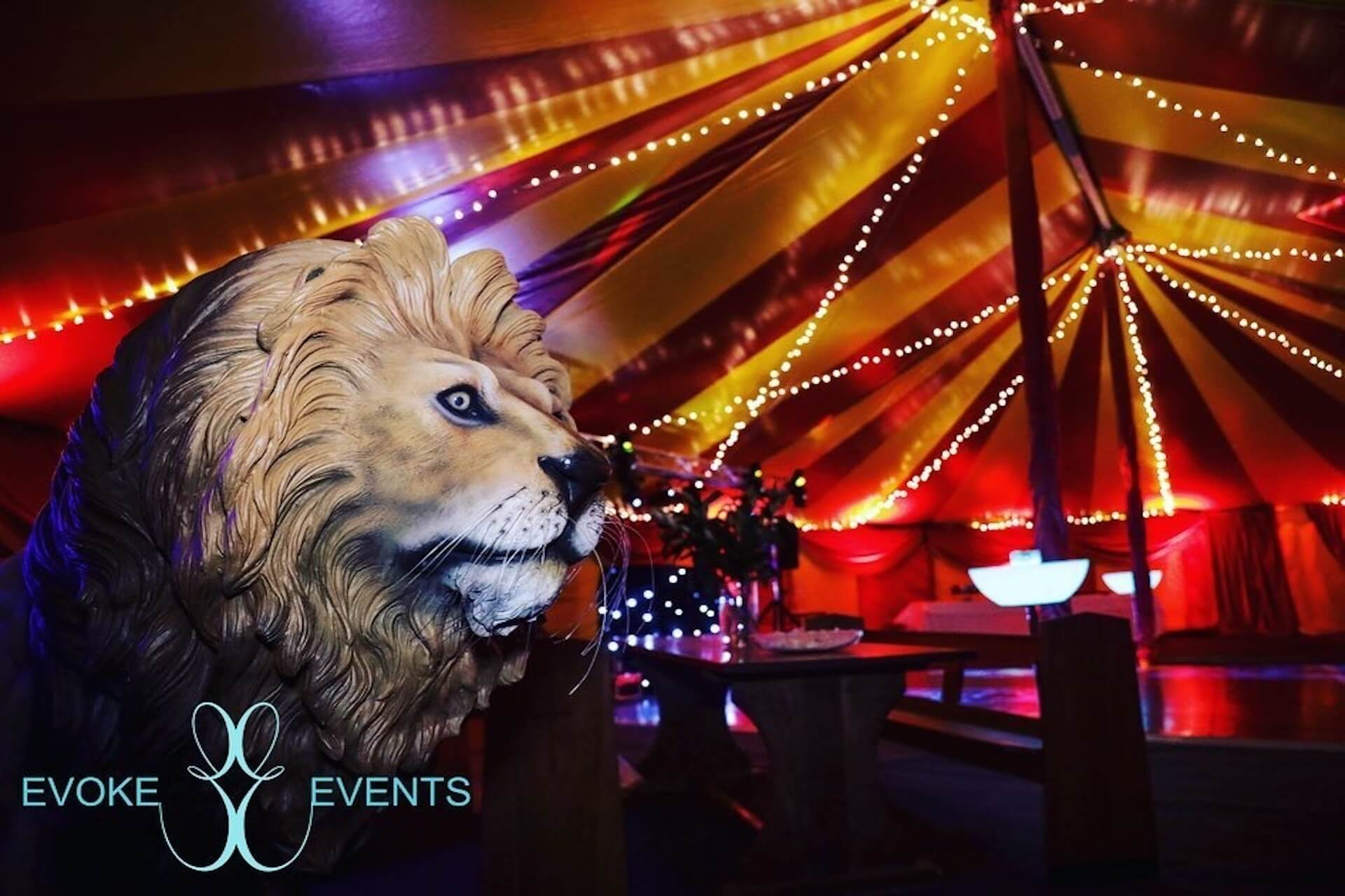 Circus lion prop by evoke events