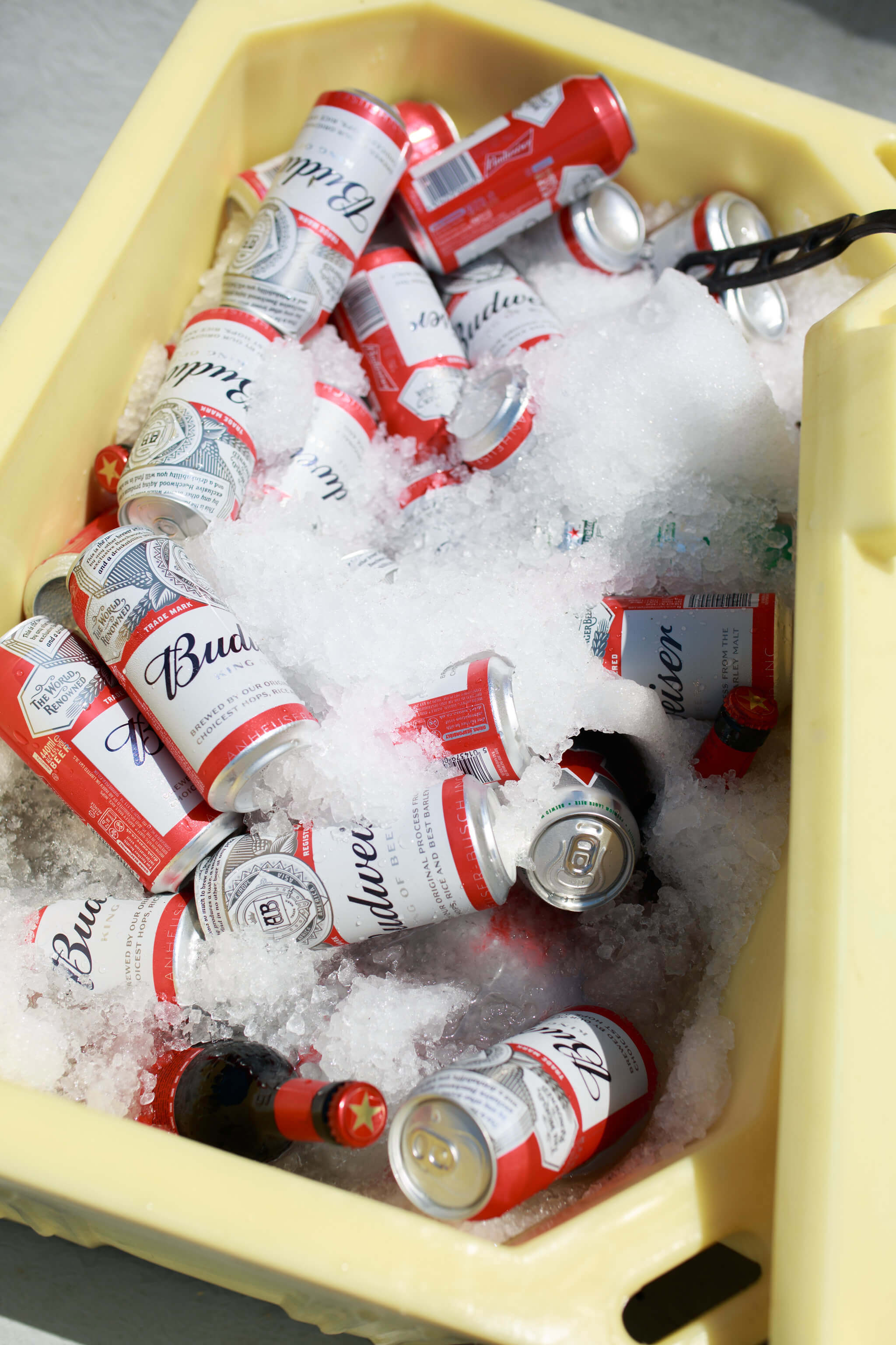 Free beer in an ice bucket at outdoor  wedding