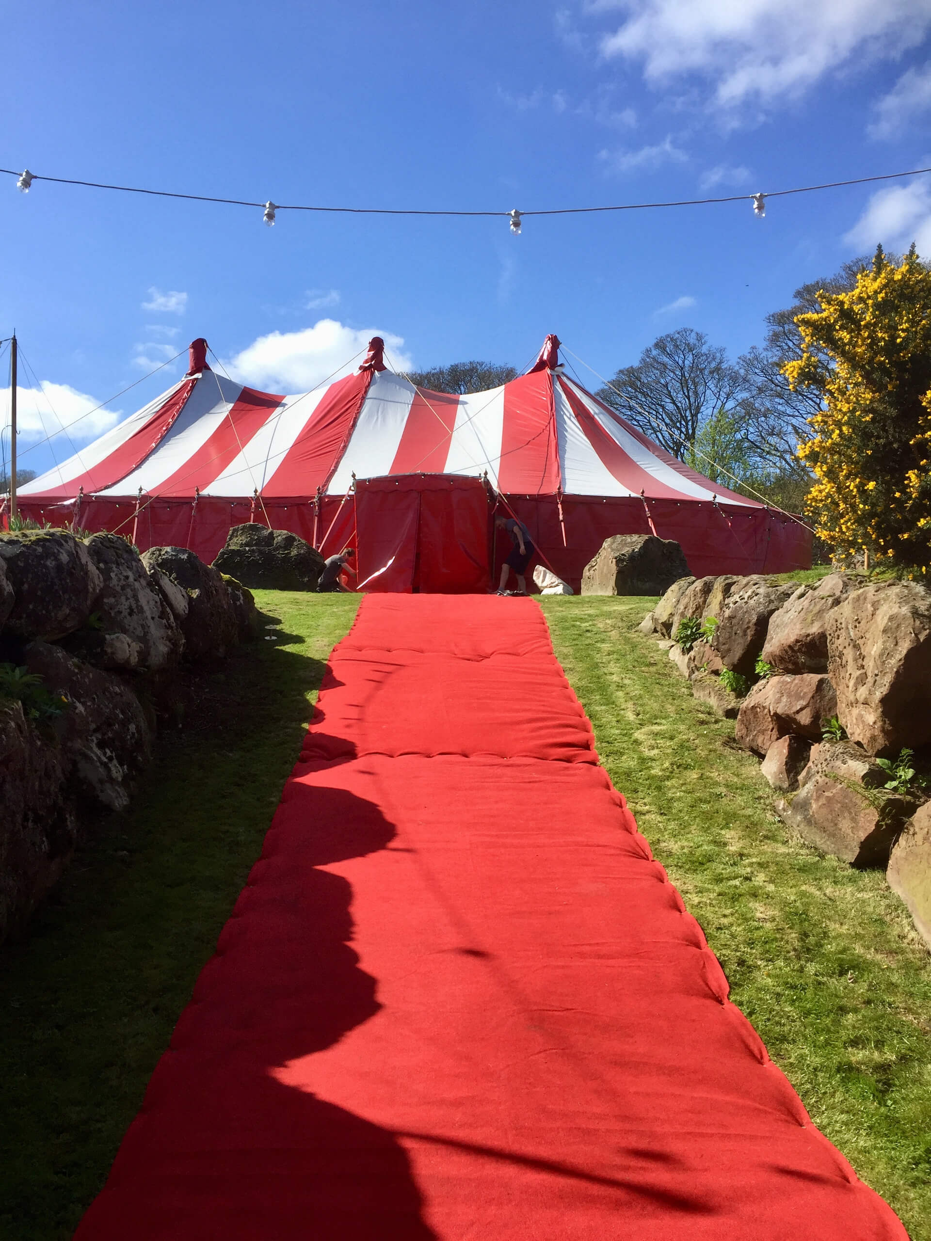 Red-carpet walkway entrance to wedding marquee in Cheshire