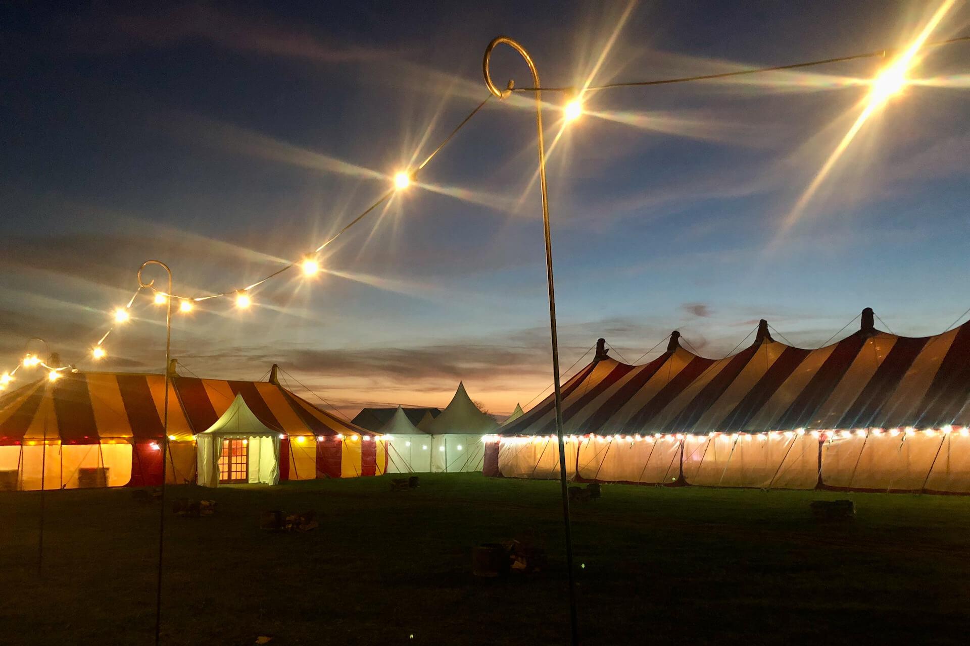 Festoon lighting on tall shepherd crooks for pathway lighting at a wedding