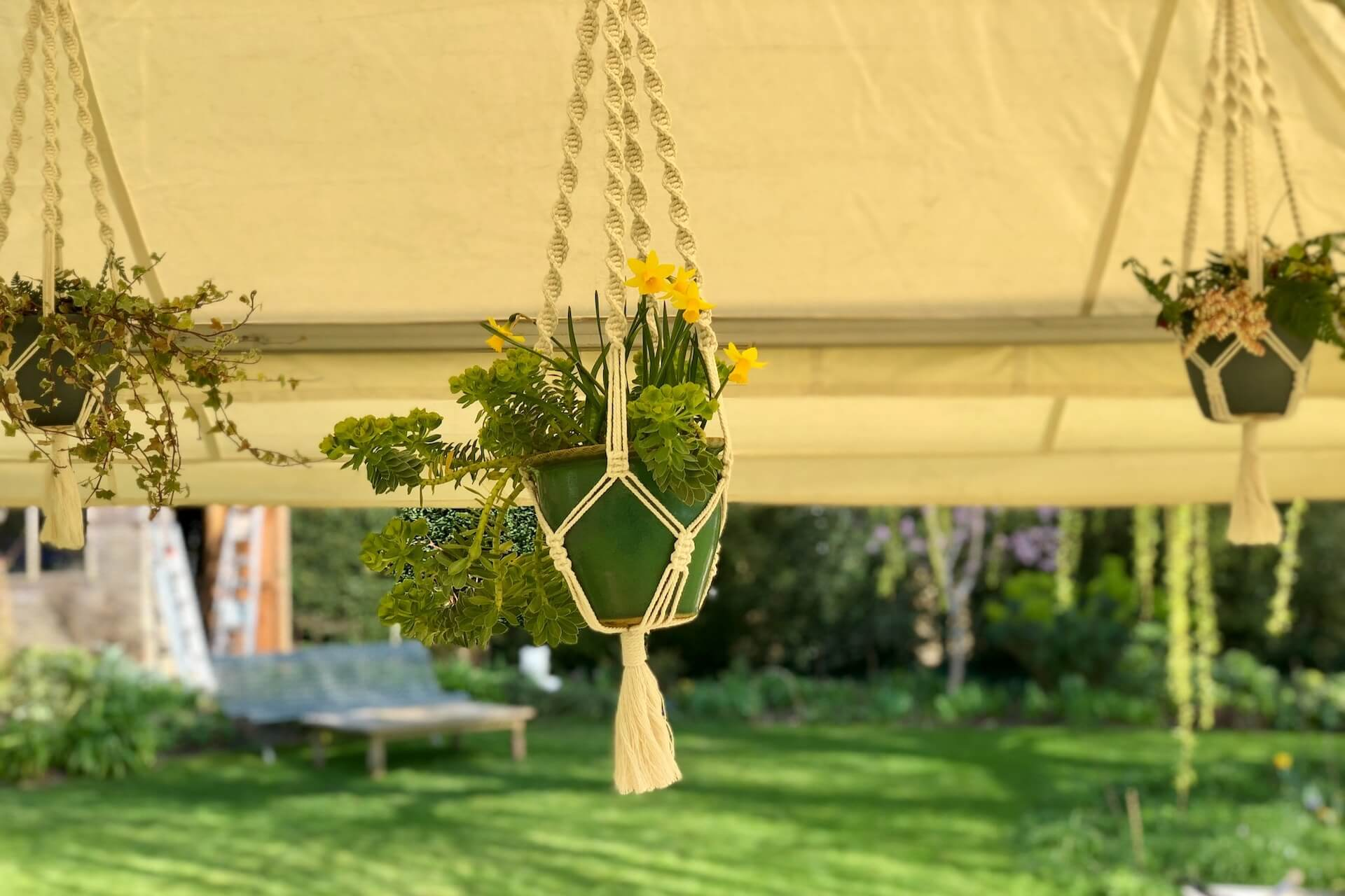 macrame plant hangers as styling accesory in tea rose marquees