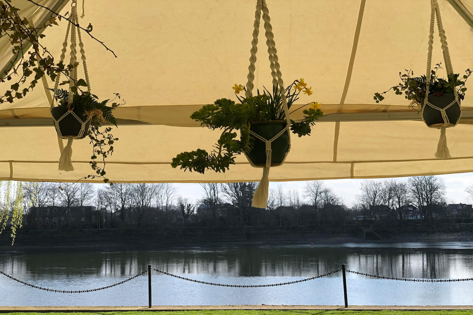 Plants hung in macrame hangers inside a canvas marquee