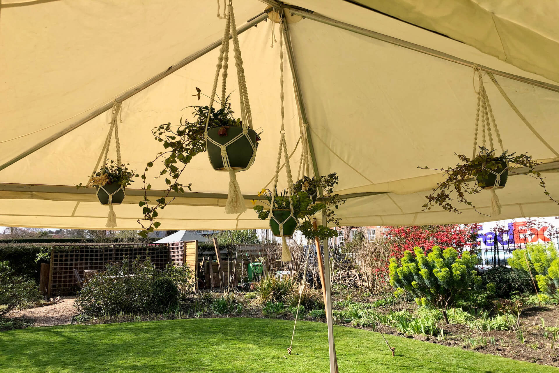 macrame plant hangers in marquee