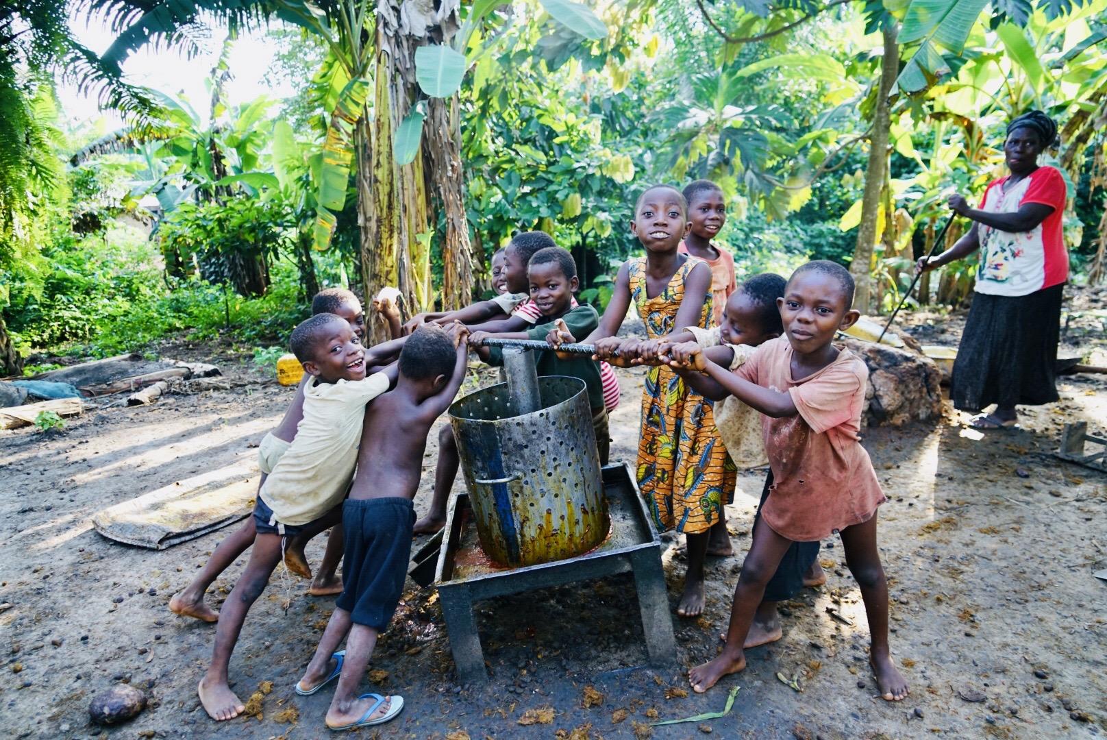 Children Working on Palm Oil Farm