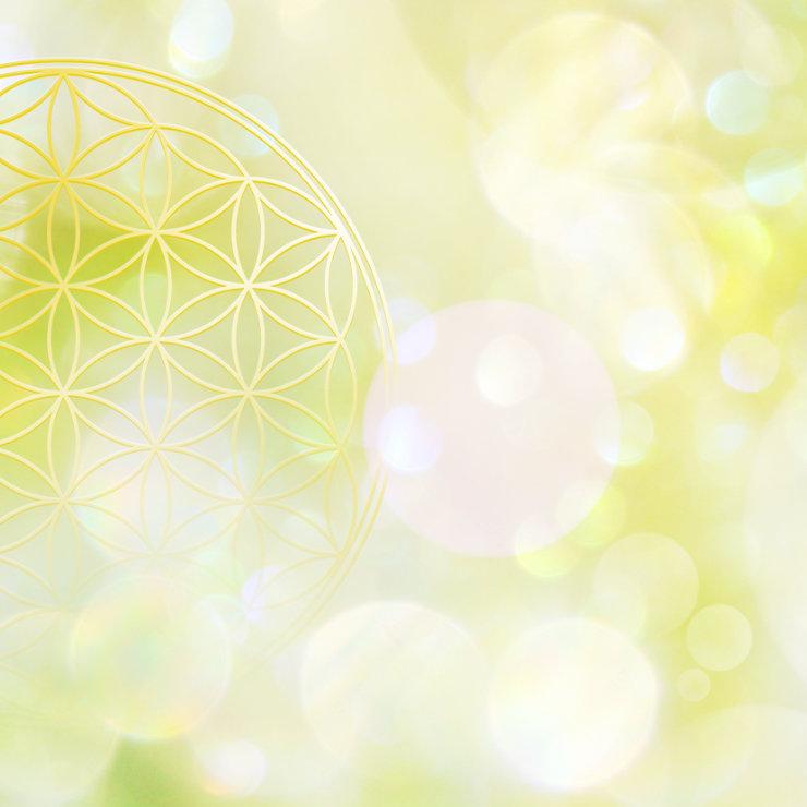 Blume des Lebens